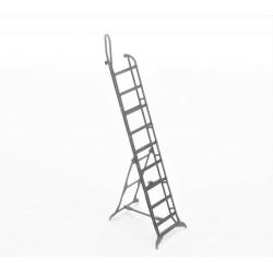Mig-25 ladder